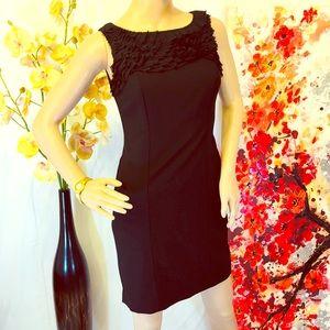 ❤️ Women's Ann Taylor Petite Gorgeous Black Dress